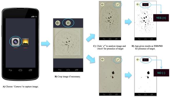 Mobile Apps | AIESTECH